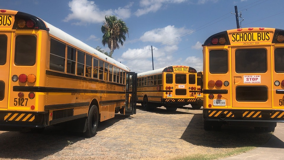 Three yellow school buses in a parking lot